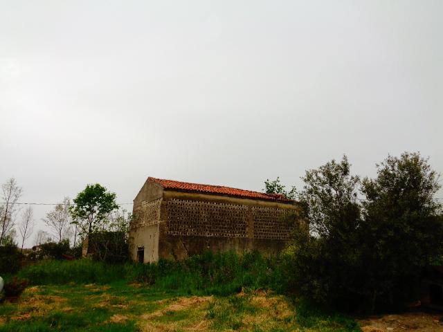 Capaccio – Terreno agricolo con soluzione indipendente di 100 mq