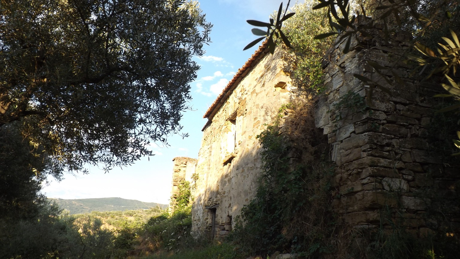 San Pietro – Castellabate. Terreno di 10000 mq