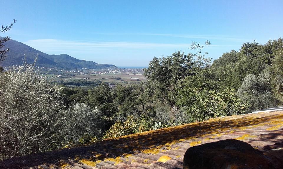 Albanella – terreno agricolo di 1 ettaro con casolare da ristrutturare