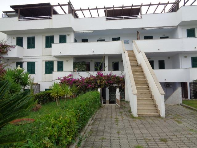 Policastro – frazione di Santa Marina – Appartamenti con giardino